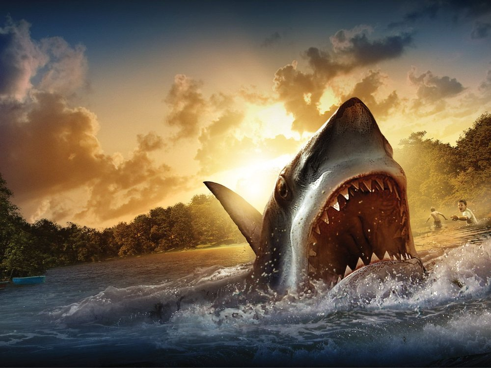 4437510-shark-wallpapers.thumb.jpg.9e51c9156a3333a81067b3425569b985.jpg